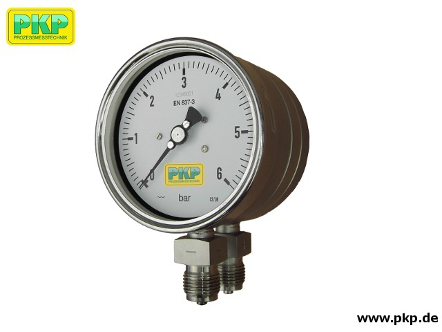 PDP02 Differential pressure gauge with diaphragm and two measuring chambers