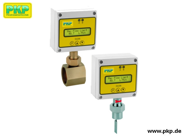 DP07 Electronic paddle-bellows flowmeter, counter and switch with analogue output